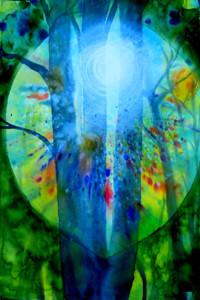 Baum-im-Licht